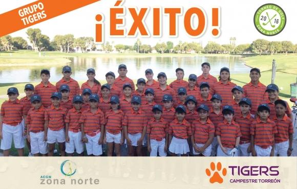 Grupo Tigers